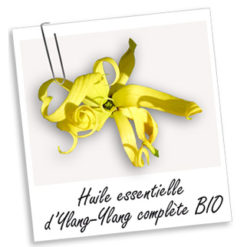 Huile essentielle de Ylang Ylang
