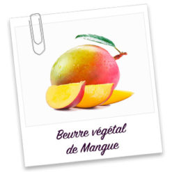 Beurre vegetal de mangue