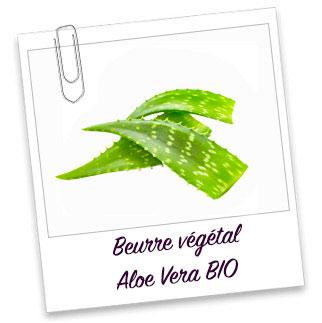 Beurre vegetal aloe vera bio