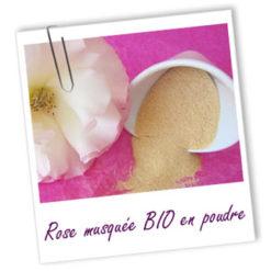 Exfoliant Rose Musquée Bio en poudre