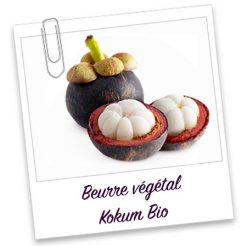 Beurre Végétal Kokum Bio