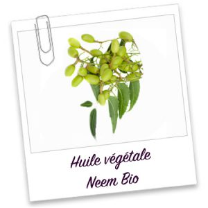 Huile vegetale Neem Bio